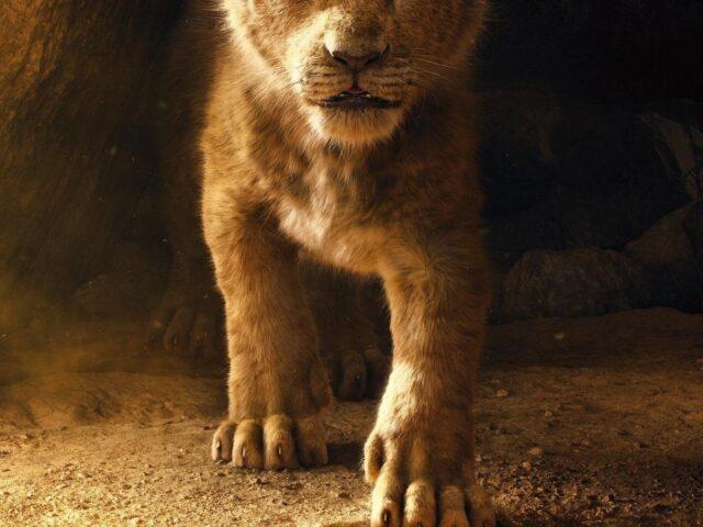 Confirman la secuela de El Rey León y ya tiene director.